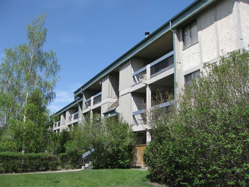 Cedars Of Calgary Apartments photo #1