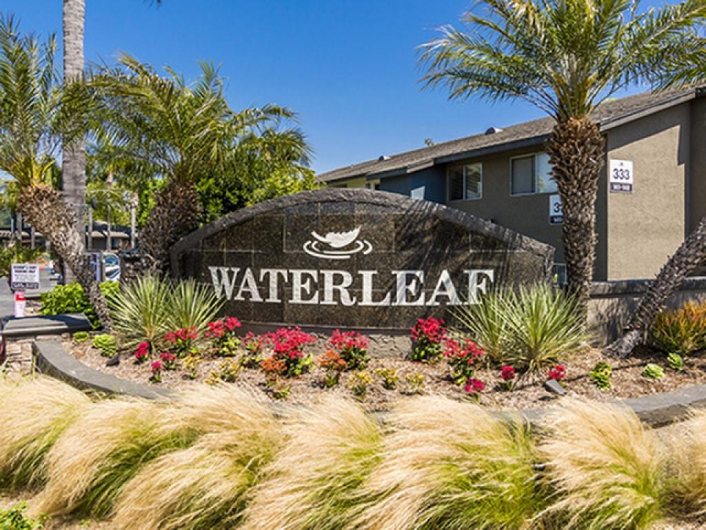 Waterleaf Apartments photo #1