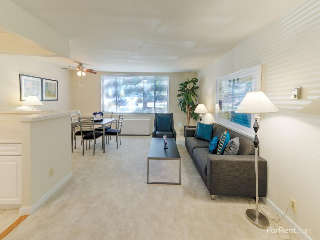 Dominion Plaza Apartments Arlington Va Walk Score