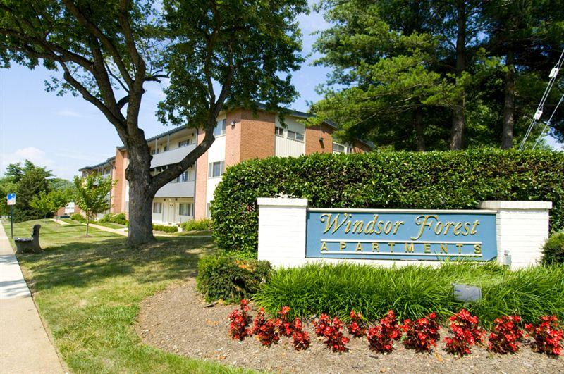 Windsor Forest Apartments photo #1