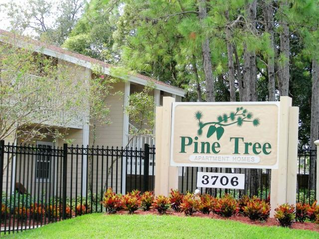 Pine Tree Apartments, Egypt Lake-Leto FL - Walk Score