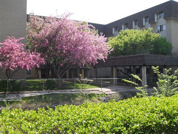Lockwood of Davison Apartments photo #1