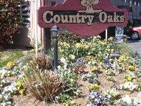 Country Oaks Apartments photo #1