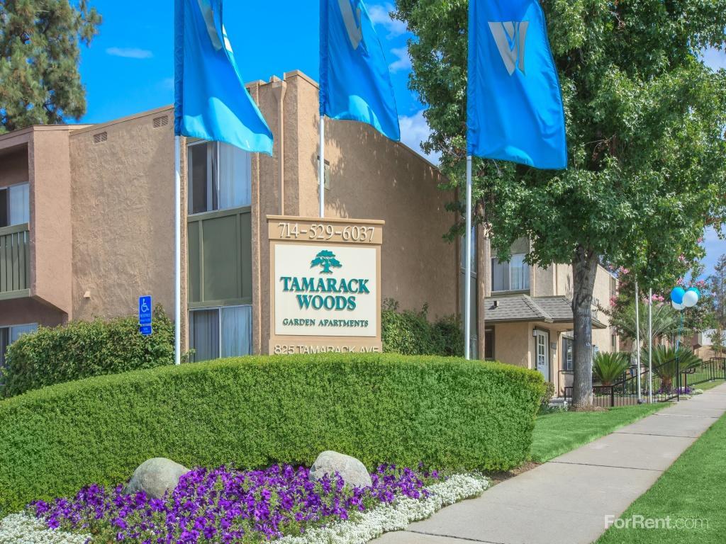 Tamarack Woods Apartment Homes Apartments photo #1
