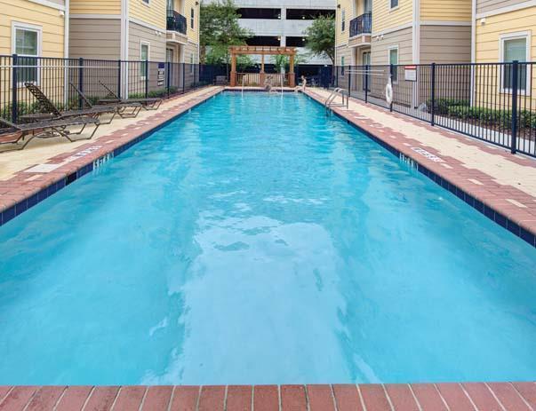 Amazing Four BR, Four BA for rent Apartments photo #1