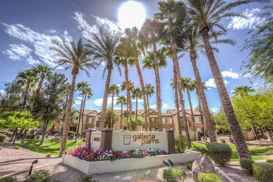 Galleria Palms Apartments photo #1