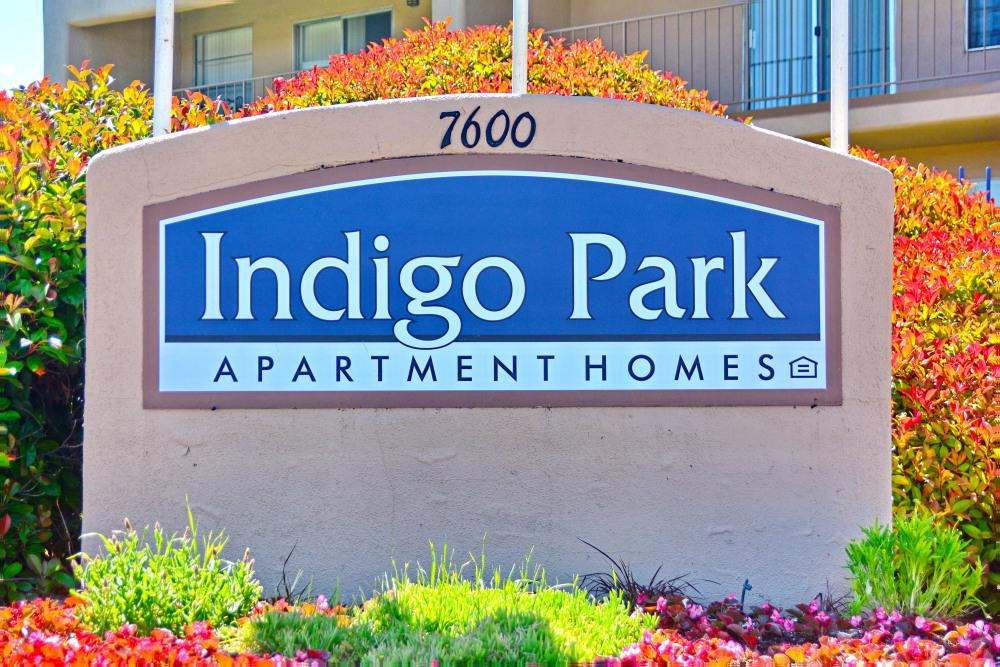 Indigo Park Apartment Homes Apartments photo #1