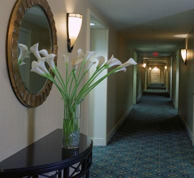 Image Result For Spring Place Apartments