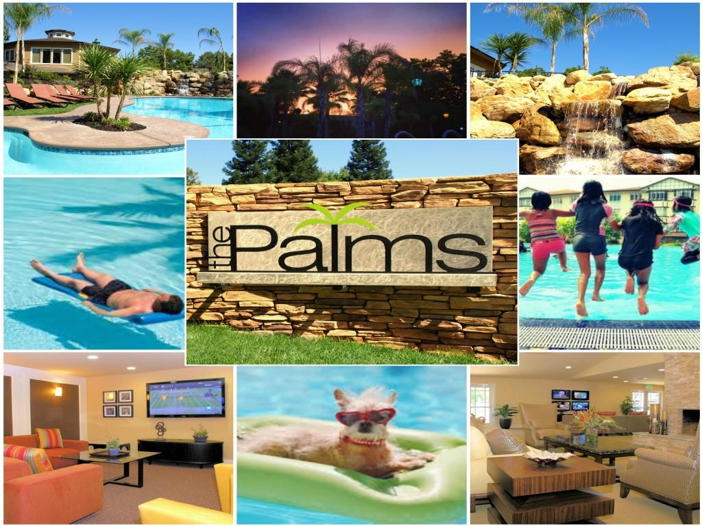 The Palms Apartments photo #1