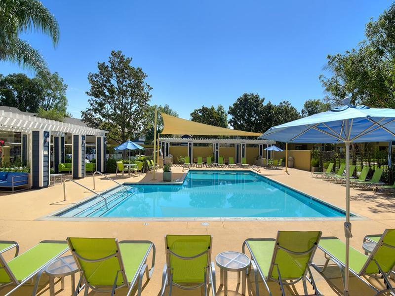 Springs-Corona Apartments photo #1