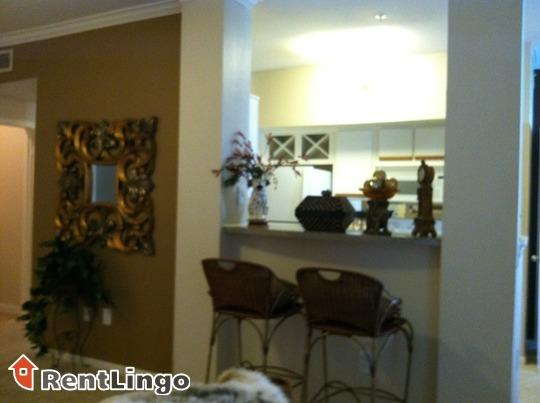 2 bd/1 bath Large 1 Bedroom in Heart of Silicon Va photo #1