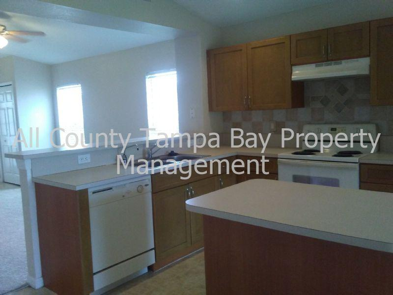 11209 Cocoa Beach Dr photo #1