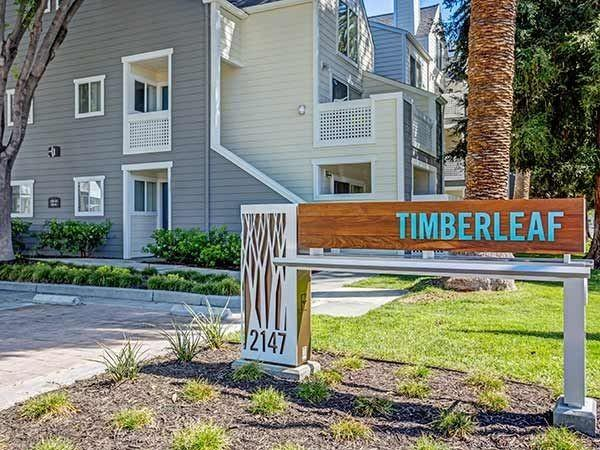 Timberleaf Apartments photo #1