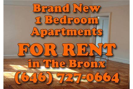 white plains road and east 214th street bronx ny 10467 new york ny