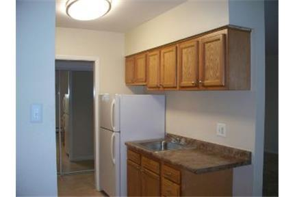 Philadelphia apts in the heart of East Mt. Airy! photo #1