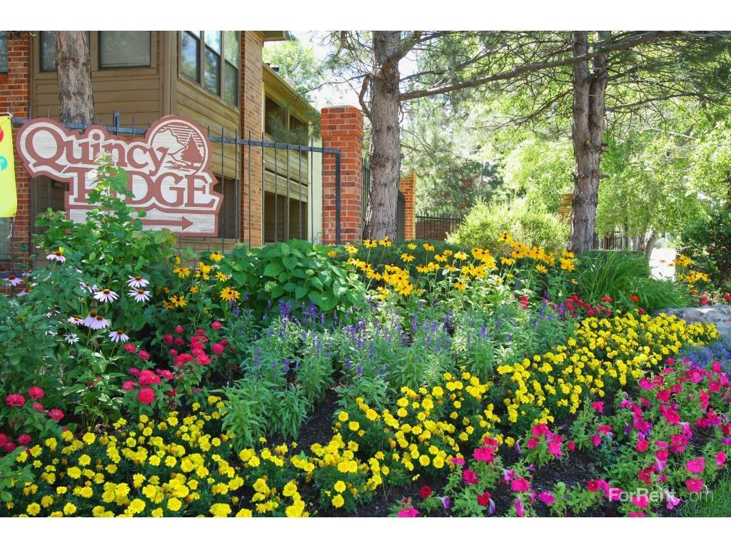 Quincy Ridge Apartments photo #1
