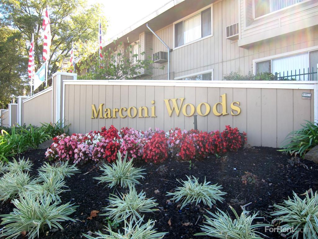 Marconi Woods Apartments photo #1