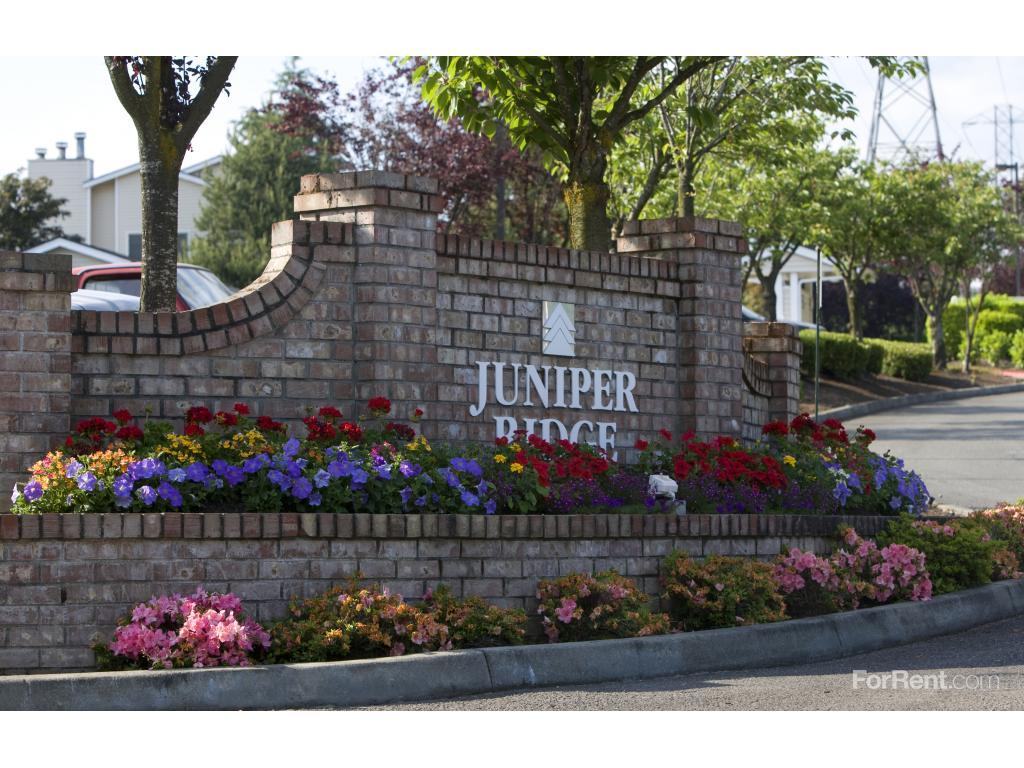 Juniper Ridge Apartments photo #1