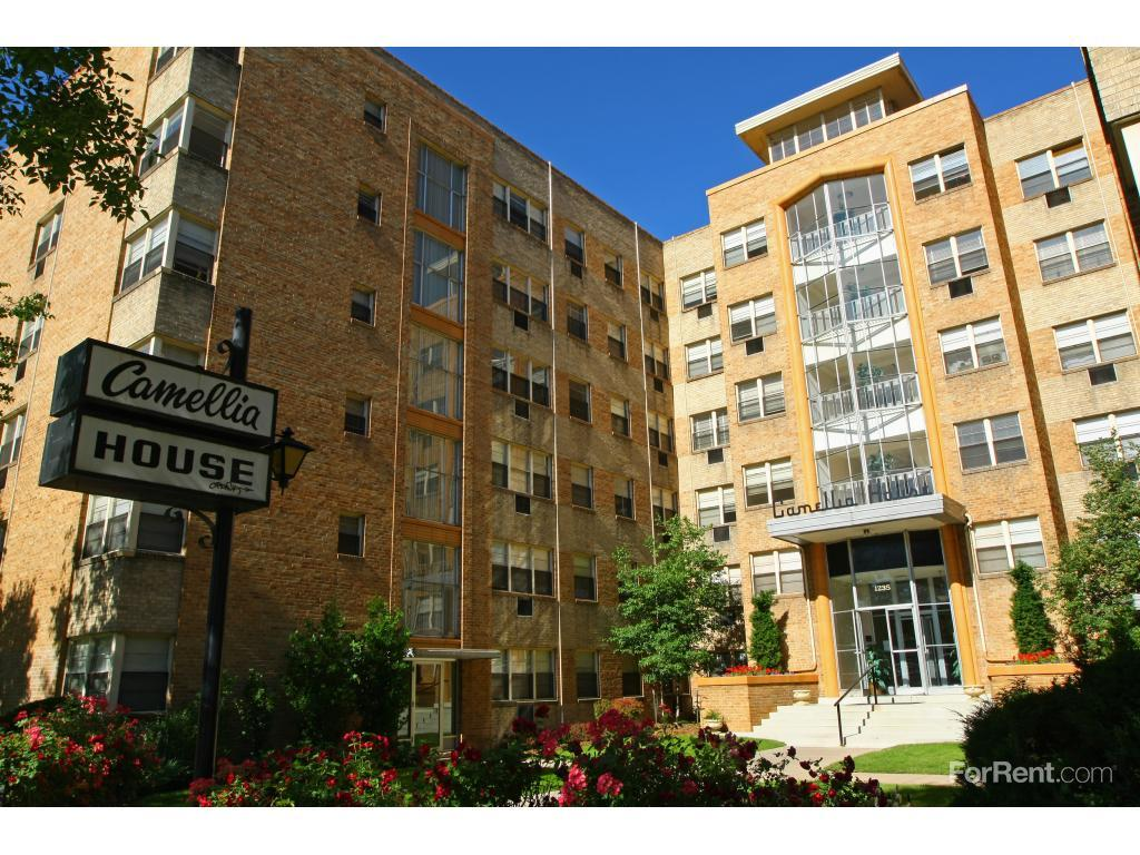 Camellia house apartments denver co walk score for Camellia homes