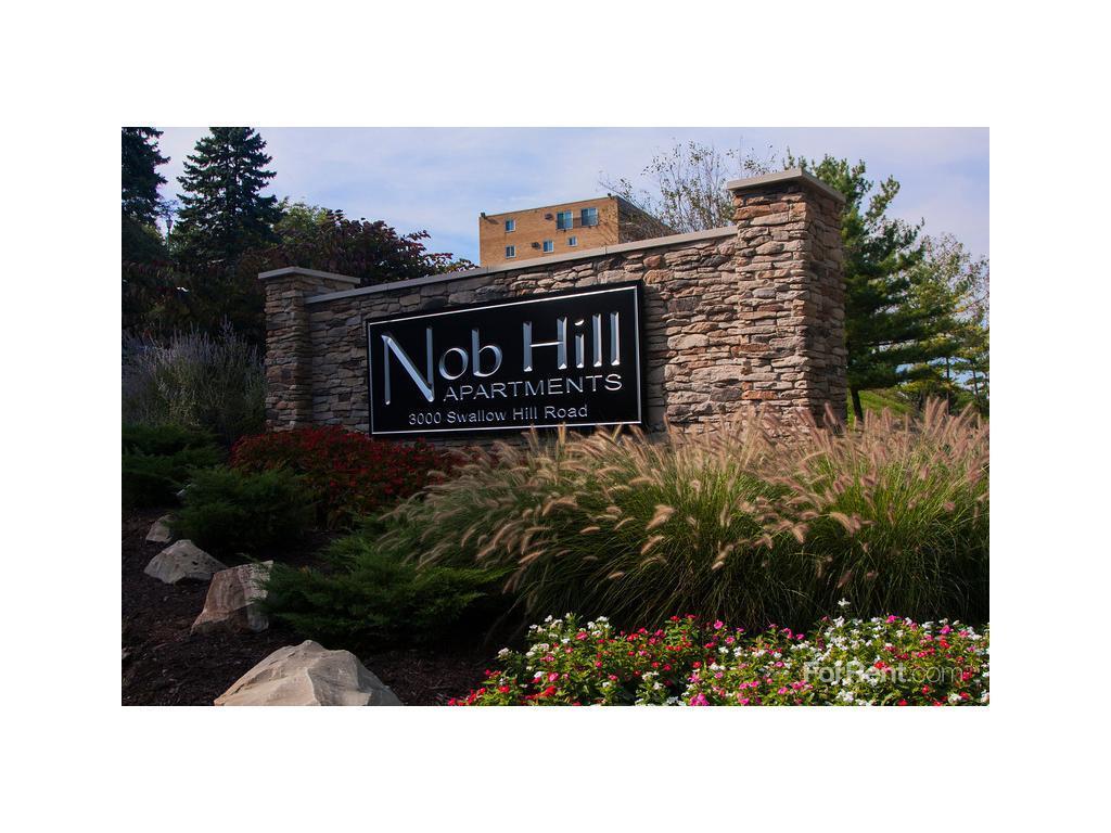 Nob Hill Apartments For Rent