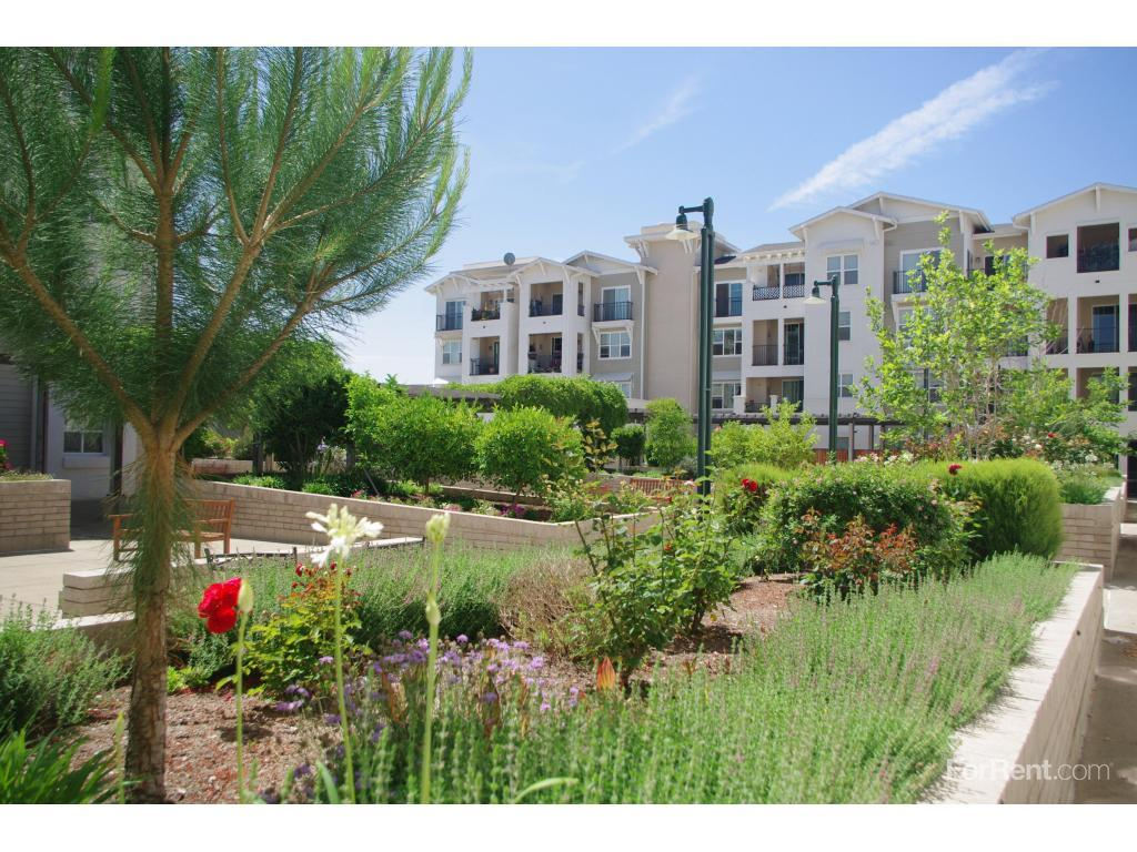 Dublin Ranch Seniors Apartments photo #1