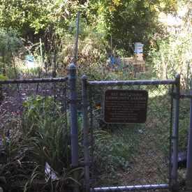 Photo of Rosslyn Community Garden