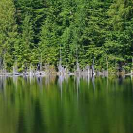 Photo of Cypress Lake, Port Moody