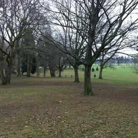 Photo of Fernhill City Park