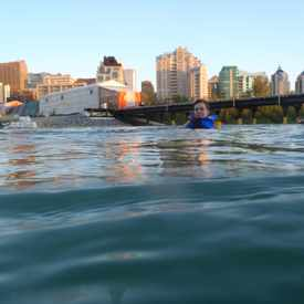 Photo of Bow River Swimming