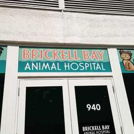 Photo of Brickell Bay Animal Hospital