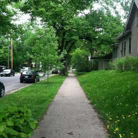 Photo of Green Neighborhood