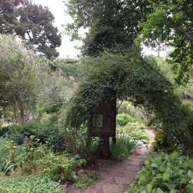 Photo of Clipper Terrace Community Garden