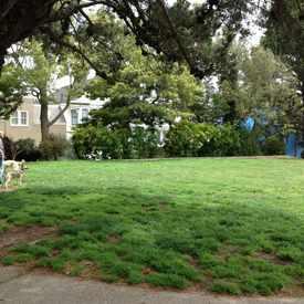 Photo of Noe Children's Playground