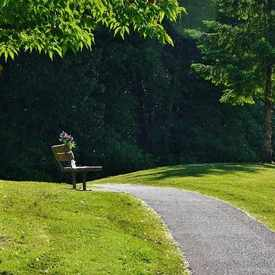 Photo of Gates Park