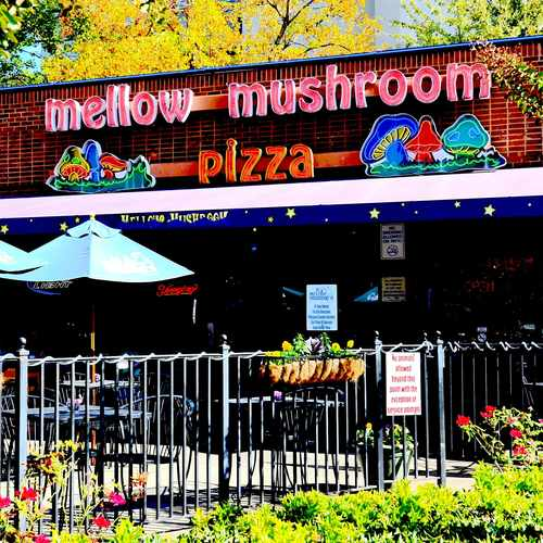 photo of Mellow Mushroom at 931 Monroe Drive Northeast Atlanta GA 30308