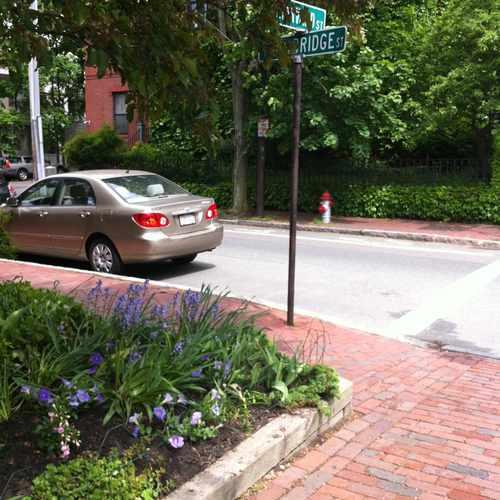 photo of Trowbridge at Harvard at 375 Harvard Street Cambridge MA 02138