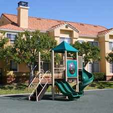 Rental info for Deerwood in the San Diego area