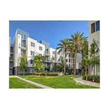 Rental info for Avalon Playa Vista