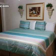 Rental info for $2014 0 bedroom Apartment in Pinellas (St. Petersburg) St Petersburg in the Historic Old Northeast area