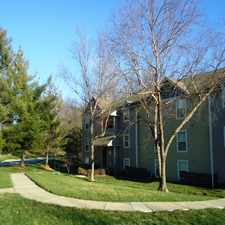 Rental info for The Woods at Windrose Creek