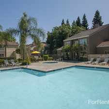 Rental info for River Pointe in the Sacramento area