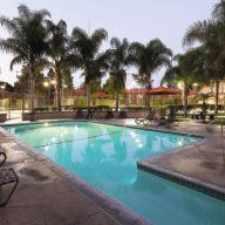 Rental info for Corona Pointe Resort Apartments