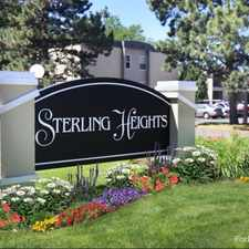Rental info for Sterling Heights