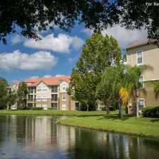 Rental info for Portofino in the Tampa area
