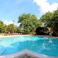 Rental info for The Place at Carrollwood