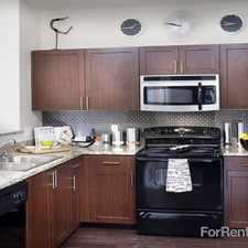Rental info for Talavera in the Denver area