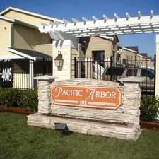 Rental info for Pacific Arbor