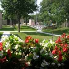 Rental info for South Pointe in the Bloomington area