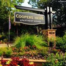 Rental info for Coopers Hawk