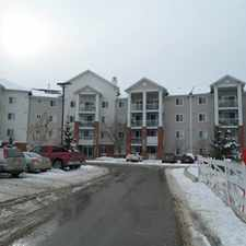 Rental info for 1 Bedroom Condo available for rent May 1st!!! in the Terwillegar South area